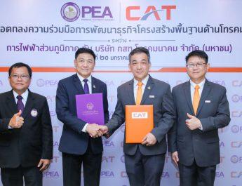 CAT จับมือ PEA พัฒนาธุรกิจโครงสร้างพื้นฐานด้านโทรคมนาคม  ลดการลงทุนที่ซ้ำซ้อน พร้อมต่อยอดพัฒนาสู่ 5G